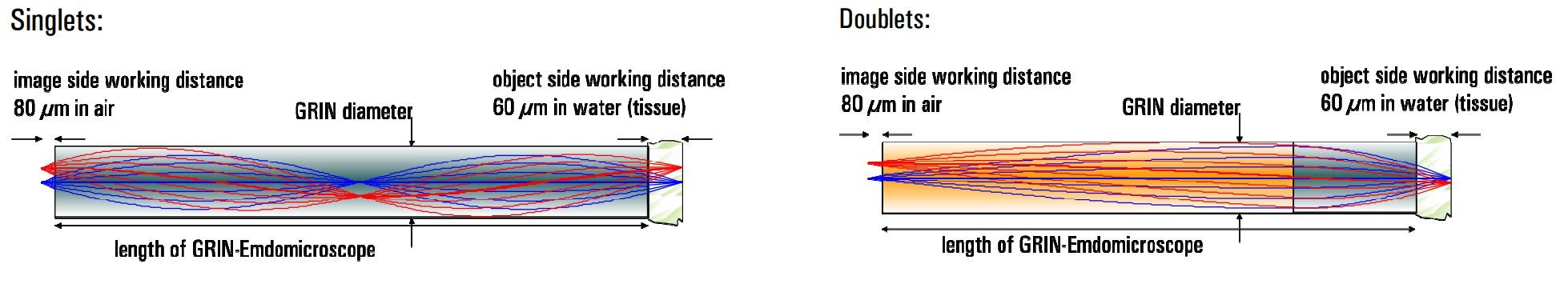 ニードルタイプ内視鏡用GRINレンズ(蛍光顕微鏡用)