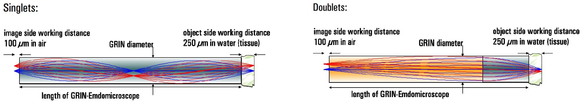 ニードルタイプ内視鏡用GRINレンズ(二光子顕微鏡用)