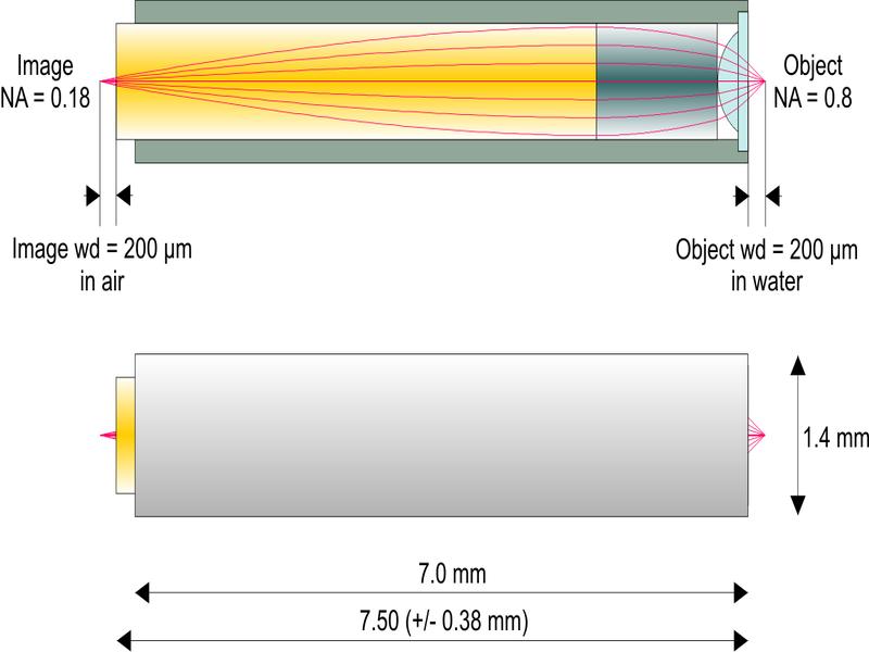 2光子励起顕微鏡用高NA対物レンズ