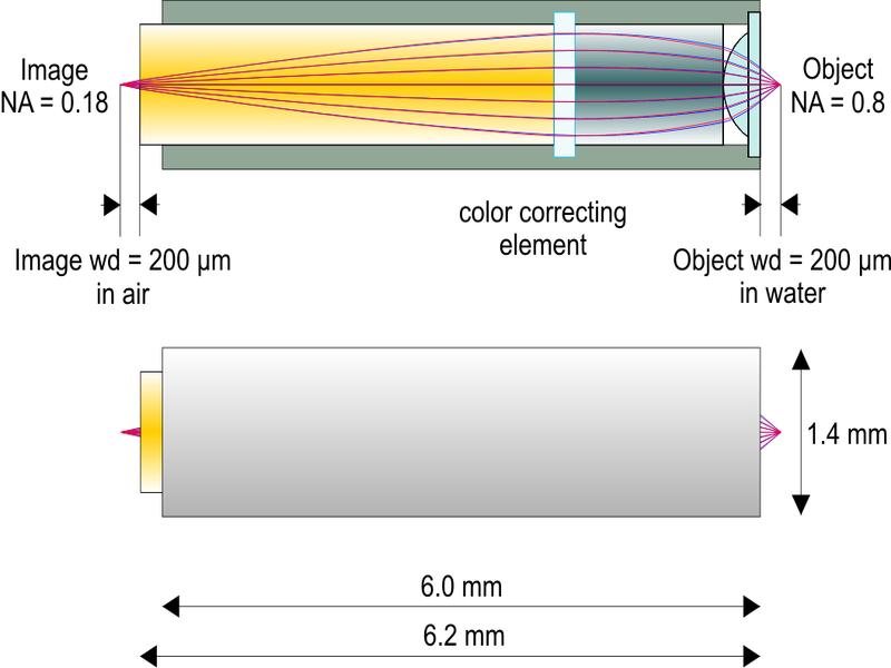2光子励起顕微鏡用高NA対物レンズ(アクロマティック仕様)