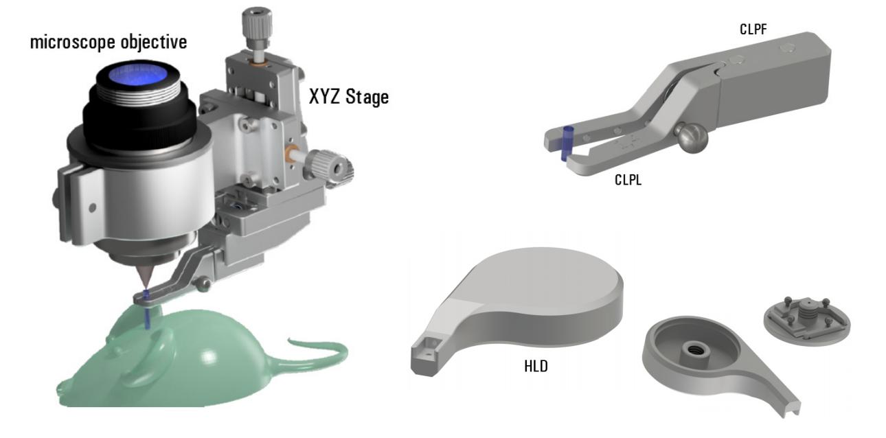 内視鏡用ニードルタイプGRINレンズ&高NA対物レンズ用位置決めステージ
